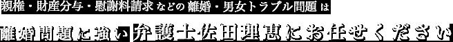 親権・財産分与・慰謝料請求などの離婚・男女トラブル問題は、離婚問題に強い弁護士 佐田理恵にお任せください
